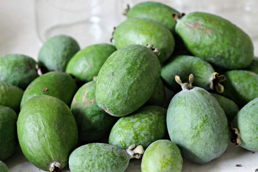 Pile of fresh feijoas