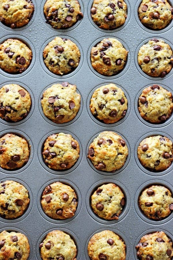 Mini Banana Chocolate Chip Muffins - perfect for lunchboxes and little hands, these mini muffins are packed full of banana chocolate goodness! | thekiwicountrygirl.com