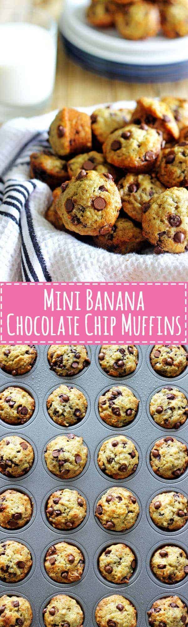 Mini Banana Chocolate Chip Muffins - perfect for lunchboxes and little hands, these mini muffins are packed full of banana chocolate goodness!   thekiwicountrygirl.com