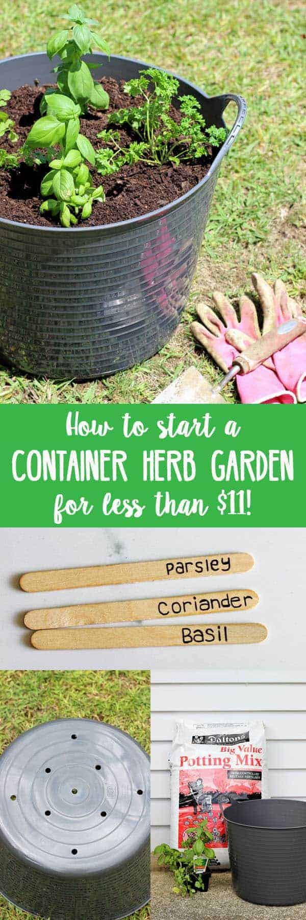 How to start a herb garden for less than $11. Full tutorial on the materials you need, how long it will take and a few handy hints about growing herbs. #garden #herbs #growyourown #homesteading #gardening | thekiwicountrygirl.com