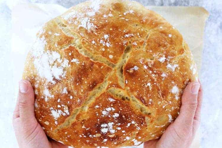 Hands holding crusty no knead bread loaf