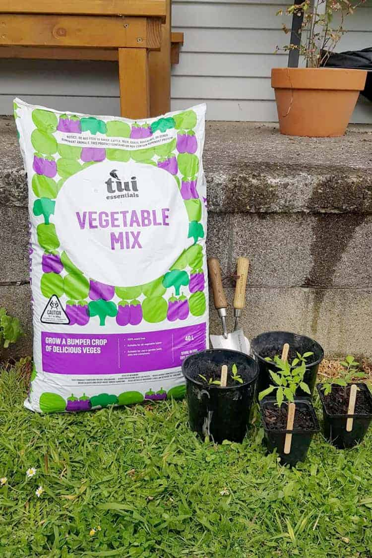 Tui Garden Vegetable Mix and fertilisers with gardening tools and pots