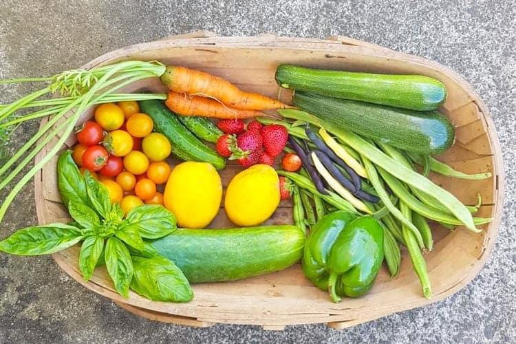 Wooden trug full of vegetables