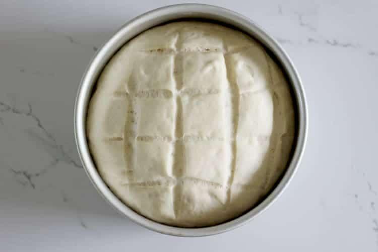 Cob loaf bread dough in a cake tin