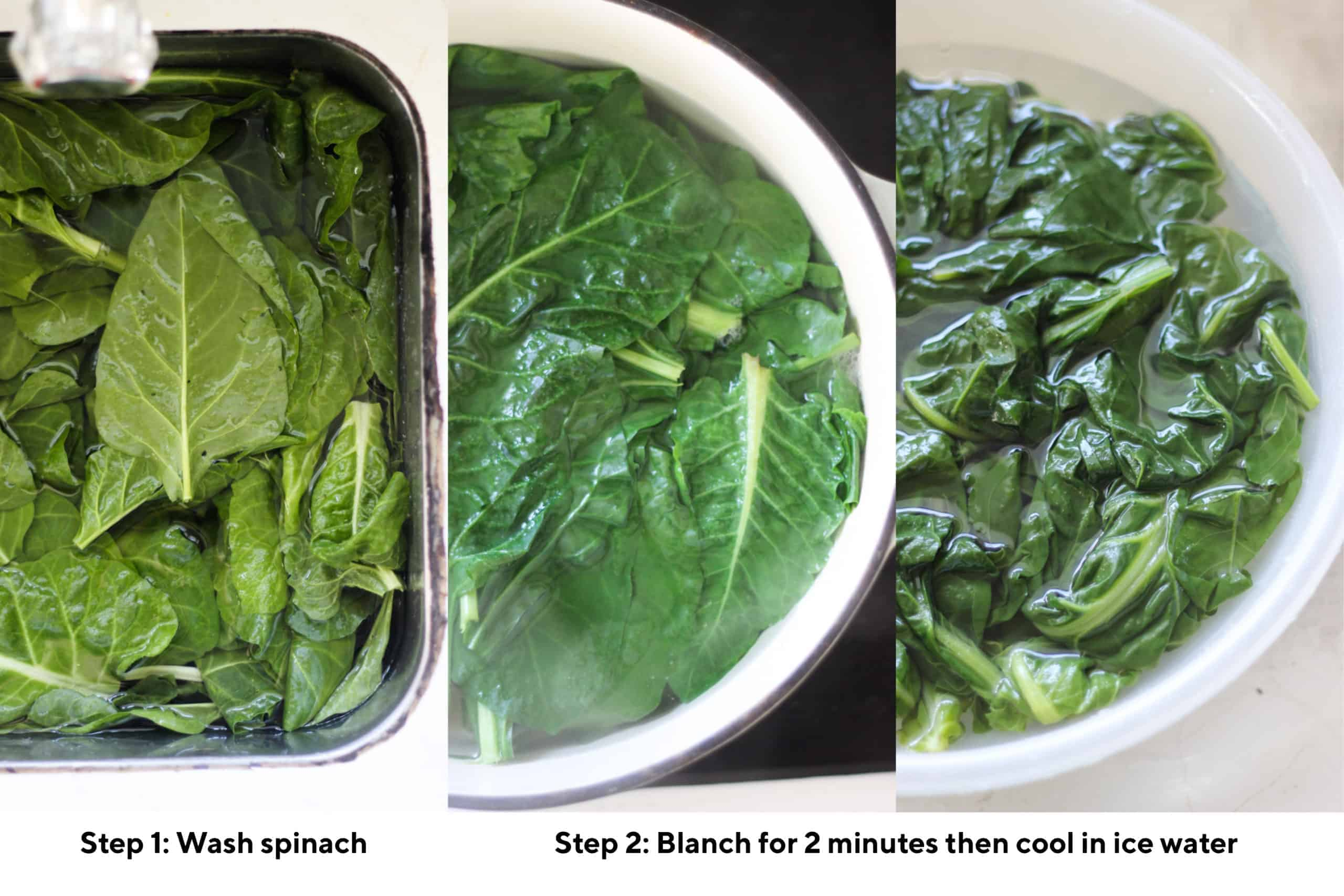 Collage showing how to freeze spinach